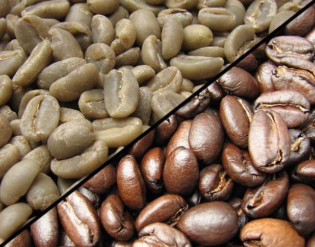 تعریف قهوه اسپشیالیتی(تخصصی)